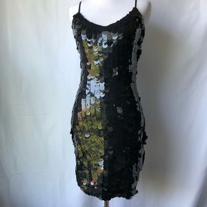 Express Large Sequin Dress